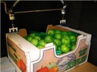 display boxes fruit 250 width